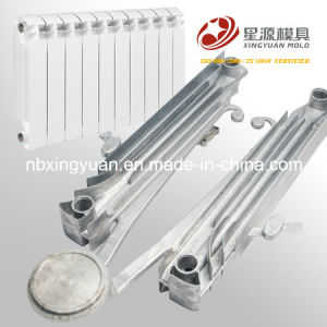 China Top One Quality Two Cavity Aluminum Bimetal Radiator Mold pictures & photos