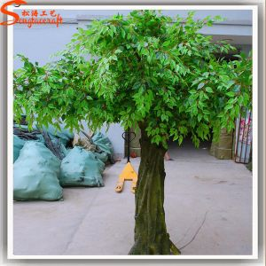 Factory Direct Evergreen Fiberglass Artificial Banyan Tree pictures & photos