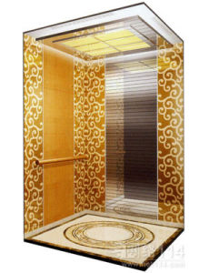 China brilliant cabin design passenger elevator china Elevator cabin design