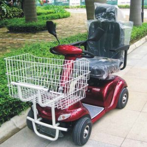 CE Approved 1 Seater Electric Shopping Carts (DL24500-3S) pictures & photos