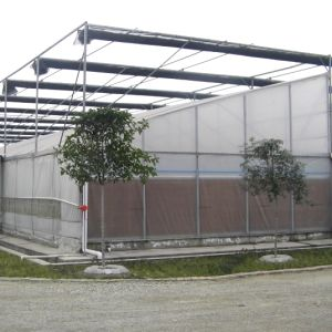 sawtooth type used greenhouse frames for sale plastic film greenhouse