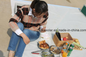 China Solar BBQ High Efficiency Mini Solar Oven Cooker pictures & photos