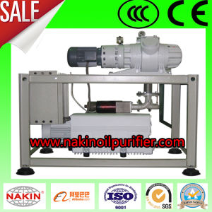 Nkvw Vacuum Pumping System, Vacuum Pump and Roots Pump pictures & photos
