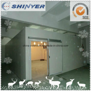 Professional Supplier Cold Storage Room pictures & photos