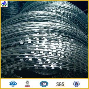 Hot Diped Galvanized Razor Barbed Wire pictures & photos