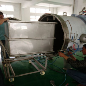 Industrial Food Sterilizer Autoclave (YS-700-SF) pictures & photos