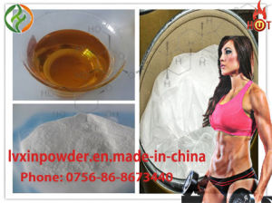 Muscle Gain Injectable Steroid Liqiud Nandrolone Decanoate / Deca (200mg/250mg/300mg/ml) pictures & photos