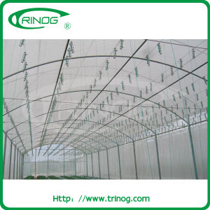 Single Tunnel Film Vegetables Greenhouse for sale pictures & photos