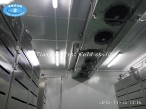 China Supply Thawing Equipment for Frozen Pork Beef Seafood pictures & photos