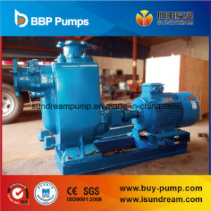 Waste and Flood Fighter Pump pictures & photos