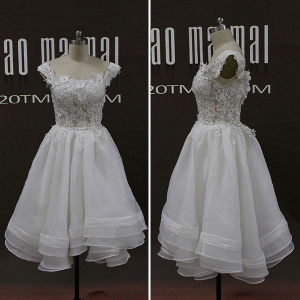 Real Photos Lace Beads Organza Short Prom Dresses (TM-PD204)