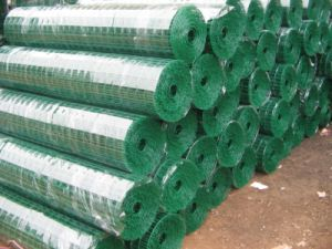 High Quality &Cheap Price Holland Wire Mesh ISO9001 pictures & photos