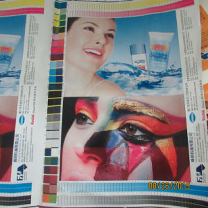 High Quality Flexographic Ci Type Flexo Printing Machine pictures & photos