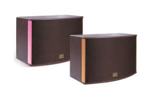 200W 3-Way Full Range Professional Karaoke Passtive Speaker (KS20) pictures & photos