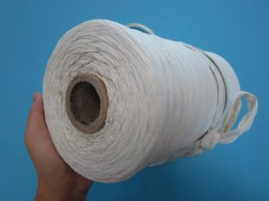 PP Filling Rope for High Tenacity Cable Filler and Twist Yarn