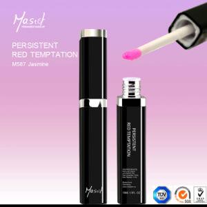 Mastor Persistent Red Permanent Makeup Waterproof Lip Gloss pictures & photos