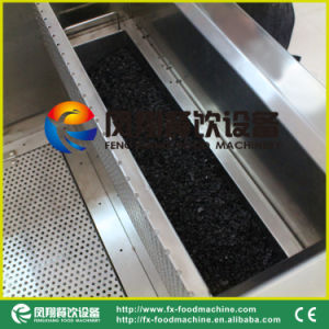 Ce Approve Vegetable and Fruit Washing Disinfecting Machine Multifuction Washer pictures & photos