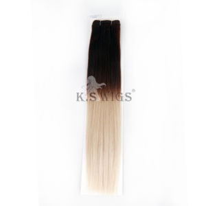 Cheap Price Wholesale Malaysian Human Ombre Hair Weave pictures & photos
