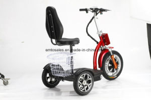 Three Wheel Electric Scooter with Ce /RoHS Approval (et-es002-new) pictures & photos