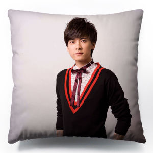 Big Size with Latest Design Cushion Cover Cotton Pillow pictures & photos