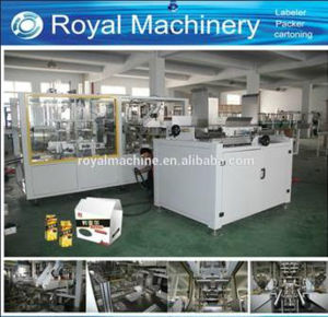 China Automatic Sink Type Carton Box Packing Machine pictures & photos