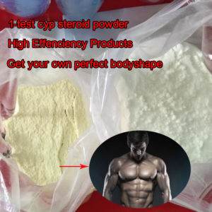 Anabolic Steroid Powder 1-Testosterone Cypionate /Dihydroboldenone Cyp /Dhb for Muscle Buidling