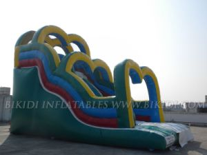 Inflatable Water Slide (B4078) pictures & photos
