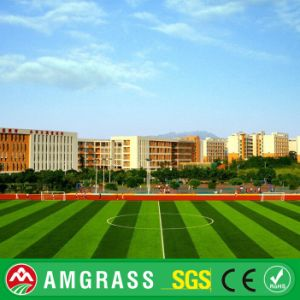 60mm Height, Bicolor Three Double Backing Sooer Field Synthetic Grass pictures & photos