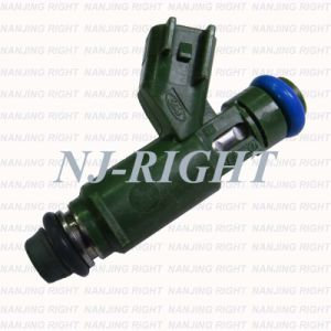 Denso Fuel Injector 1X43-AB0 for Jaguar X-Type pictures & photos