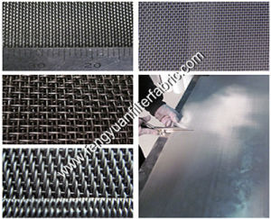 Stainless Steel Wire Belt pictures & photos