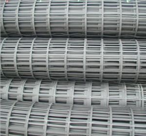 PP and Polypropylene Uniaxial Geogrids pictures & photos