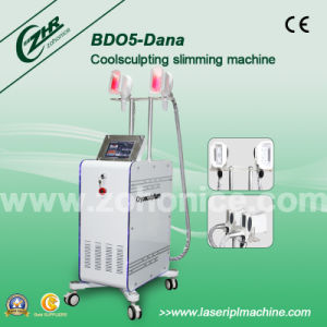 Cryolipolysis Body Shape Slimming Equipment pictures & photos