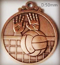 Volleyball Medals/Volleyball Badge/Volleyball Coins (FCd6520)