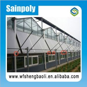 Hot Sale Factory Price Sainpoly High Transmissivity Glass Greenhouse pictures & photos