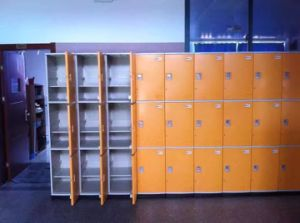 Gym Lockers pictures & photos