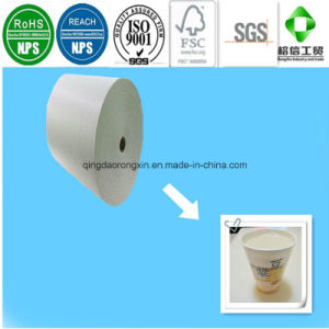 Single Side PE Coated Yon Ho Soy Milk Cup Paper pictures & photos