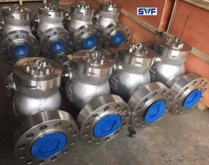 Check Valve for API Industry pictures & photos