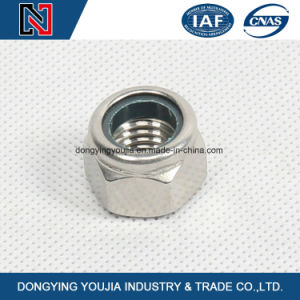 DIN985 Prevailing Torque Type Hexagon Nuts with Nonmetallic Insert pictures & photos