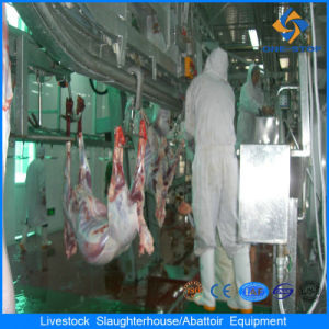 Sheep Slaughtering Abattoir Butcher Equipment and Processing Line pictures & photos