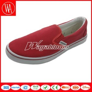 Leisure Flat Canvas Shoes Comfort Casual Shoes pictures & photos