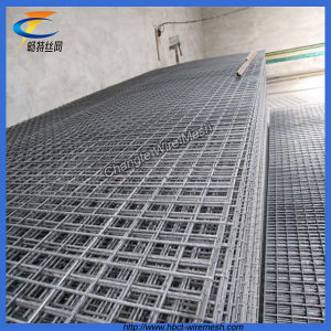 Top Quality Galvanized Welded Wire Mesh Panel pictures & photos