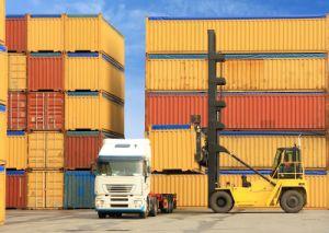 Cheap Ocean Shipping Service to Egypt pictures & photos