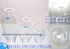 Hand Made Clear Glass Vase (CTC1120) pictures & photos