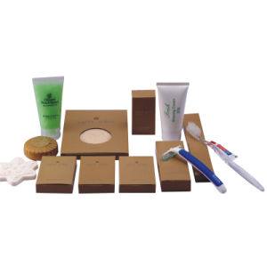 Luxury Hotel Room Amenities List, Hotel Amenities Supplier, Hotel Bathroom Amenities Manufacturer Care Set pictures & photos