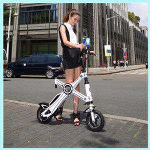 36V Brushless 250W or 350W Folding Electric Bicycle Green Power Electric Bike pictures & photos