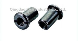 Joint Connector Nut Knurl Around The Body Furniture Connector Slot Nut Pan Washer Sleeve Nut/Hardware/Galvanized Stainless Steel Nut/Bolts/Screw pictures & photos