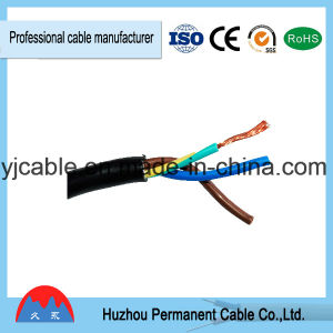 Huzhou Permanent Rvv 1mm 1.5 mm 2.5mm 4mm 16mm 3 Copper Cores PVC Electric Wire Cable pictures & photos