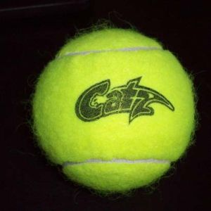 Tennis Ball, Wool Felt, for Professional Play pictures & photos
