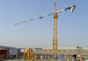 Ce Crane Hoist Made in China by Hsjj pictures & photos
