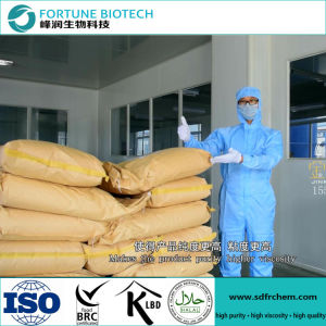 Food Grade CMC Powder with High Quality pictures & photos